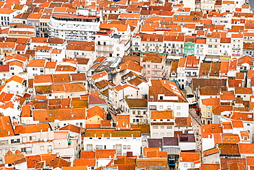 Looking down to orange tiled rooftops in the town of Nazare, Estremadura, Portugal, Europe