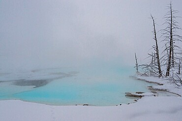 Blue thermal feature shrouded in fog, Yellowstone National Park, Wyoming, United States