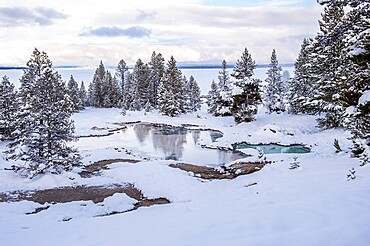 Snowscape of thermal feature with reflection, Yellowstone National Park, Wyoming, United States