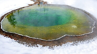 Morning Glory pool hot spring in the snow, Yellowstone National Park, Wyoming, United States