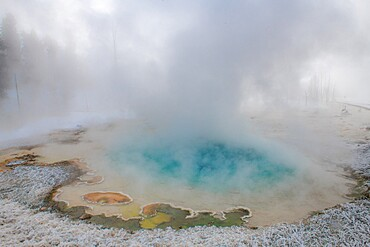 Blue thermal feature in the fog and snow, Yellowstone National Park, Wyoming, United States