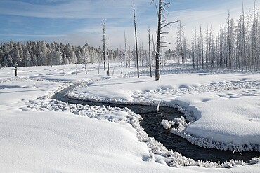 Snowscape with stream and trees, Yellowstone National Park, Wyoming, United States