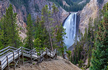 Stairs leading to Lower Falls of the Grand Canyon, Yellowstone National Park, UNESCO World Heritage Site, Wyoming, United States of America, North America