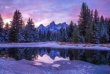 Evening light, reflection of Teton Range in icy pond, Schwabacher's Landing, Grand Teton National Park, Wyoming, United States