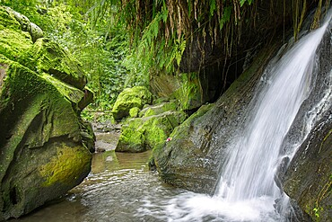 Waterfall in the jungle with rocks, Bali, Indonesia, Southeast Asia, Asia
