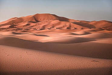 Sand dunes at sunrise in Sahara Desert, Merzouga, Morocco, North Africa, Africa