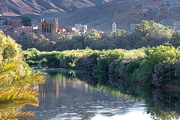 Sunsrise on a river with a kasbah's ruin reflection, Draa Valley, Morocco, North Africa, Africa