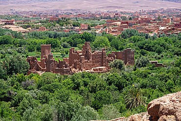 Ruins of an old palace in the middle of a palm oasis, Morocco, North Africa, Africa