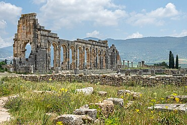 Historical site of ancient Roman ruins of Volubilis, UNESCO World Heritage Site, Morocco, North Africa, Africa