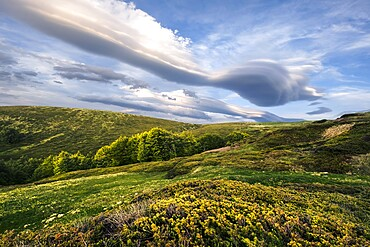 Lenticular clouds on Cusna mountain, Cusna mountain, Appenines, Emilia Romagna, Italy, Europe