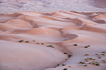 Sand dunes detail before dawn in the Rub al Khali desert, Oman, Middle East