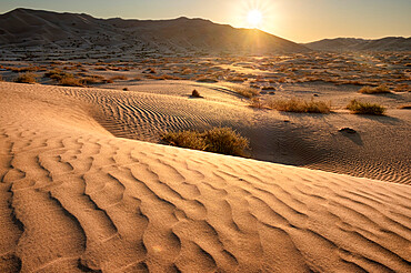 Sand dunes at sunset in the Rub al Khali desert, Oman