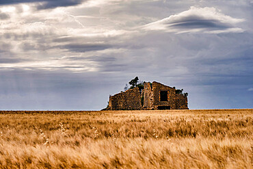Ruins in a wheat field with cloudy sky, Valensole, Provence, France, Europe