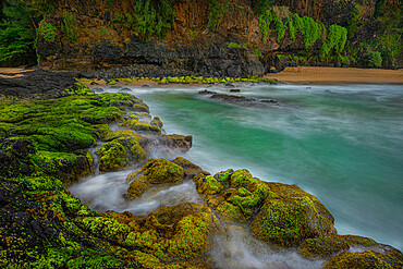 A hidden mossy and turquoise beach cove in Hawaii, United States of America, Pacific