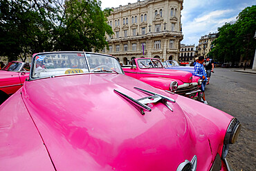 Vintage cars as taxis lined up awaiting fares, Havana, Cuba, West Indies, Central America