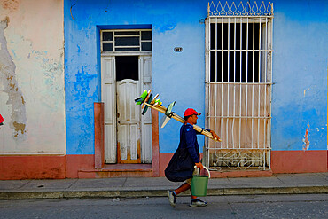 A working man carrying his supplies to the job, Trinidad, Sancti Spiritus, Cuba, West Indies, Central America