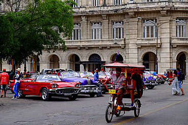 A bicycle carriage rides past many antique cars, Havana, Cuba