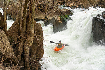 A whitewater kayaker runs the drop 'Bitch Monkey' on the Great Falls of the Potomac River, Maryland USA. MR