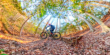 A mountain biker rides off a homemade jump in the woods near Cabin John, Maryland USA. - 1343-118