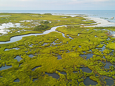 Chesapeake Bay saltmarsh and winding creeks of the Plumtree National Wildlife Refuge, Hampton, Virginia, United States of America, North America