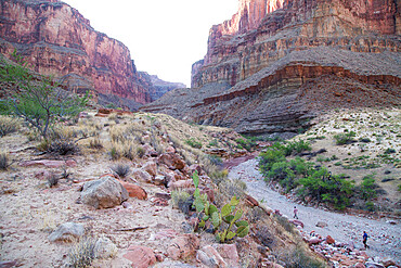 Hikers head up a dry gulch in a side canyon off the Grand Canyon, Arizona, USA