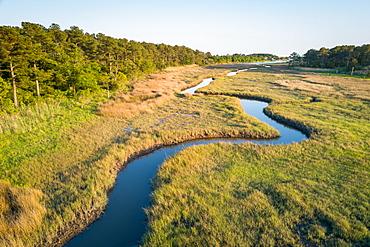 Winding creek through Chesapeake Bay salt water marsh near Hampton, Virginia USA