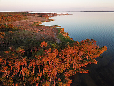 Aerial Panorama of Pamlico Sound salt marsh, Nags Head, North Carolina USA