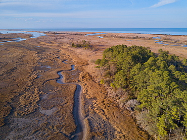 A winding creek at low tide through tidal salt marsh with Chesapeake Bay in the background