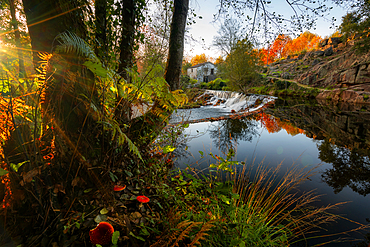 Nature landscape with red mushrooms with waterfall and water reflection at sunset in Mondim de Basto, Portugal