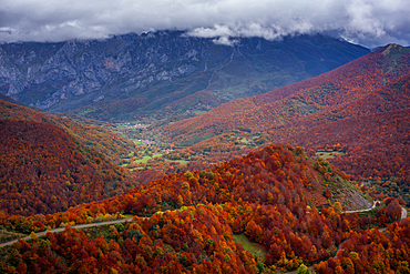 Road crossing beautiful colorful autumn tree landscape in Picos de Europa National Park, in Spain