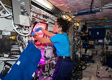 Astronaut Jessica Meir with Space Veggies