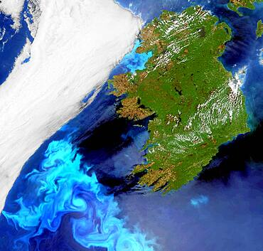 Phytoplankton bloom off Ireland, satellite image