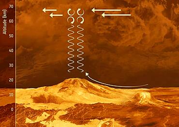 Gravity Waves on Venus