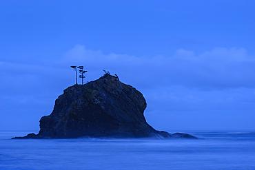 Blue hour at Second Beach, Olympic National Park, Washington.