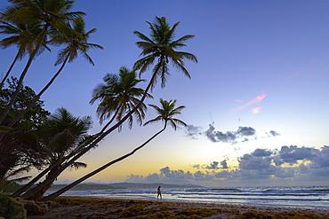 Woman walking on the beach at sunrise at Magdalena Grand Beach Resort on Tobago island, Trinidad and Tobago.
