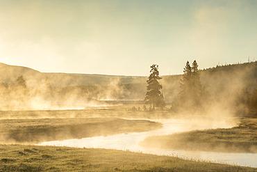 Gibbon River at sunrise, Yellowstone National Park, Wyoming.