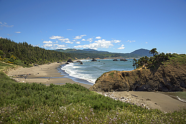 Battle Rock and beach at Port Orford on the Southern Oregon Coast.