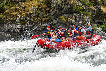 Whitewater rafting on the Snake River in Hells Canyon with ROW Adventures.