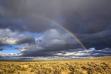 Rainbow over the sagebrush desert of southeast Oregon.