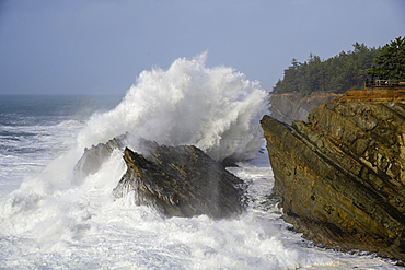 Storm surf at Shore Acres State Park on the southern Oregon coast.