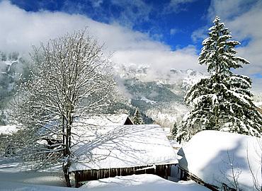 Snow covered barns, Wengen, Bernese Oberland, Swiss Alps, Switzerland, Europe