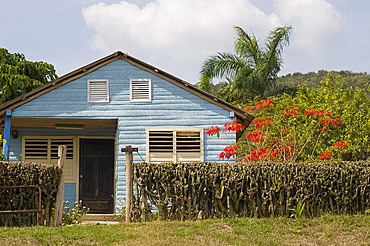 A small wooden house with traditional shutters on the windows in the countryside, Holguin, Cuba, West Indies, Central America