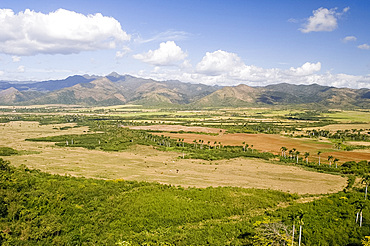Sugar cane fields and the Escambray Mountains, Sancti Spiritus, near Trinidad, Cuba, West Indies, Central America
