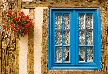 Flowers around a blue window in a traditional half timbered house, Normandy, France, Europe