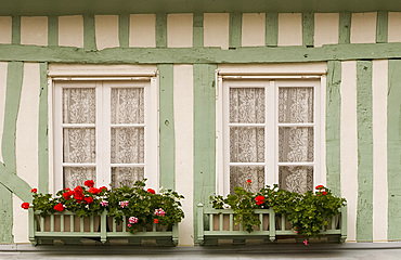 A colourful green and white half timbered building with geranium flower boxes in Beaumont en Auge, Normandy, France, Europe