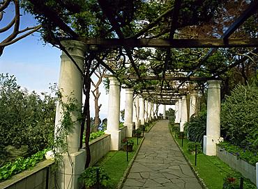 Garden at Axel Munthe's House, Isle of Capri, Italy, Europe