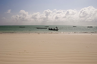 Traditional wooden dhows in the sea near Paje, Zanzibar, Tanzania, East Africa, Africa