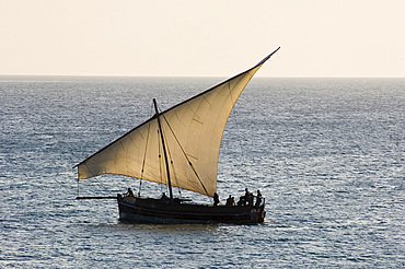 A traditional wooden dhow sailing near Stone Town at sunset, Zanzibar, Tanzania, East Africa, Africa