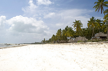 The beach at Jambiani with beachfront hotels built in thatched African style, Zanzibar, Tanzania, East Africa, Africa