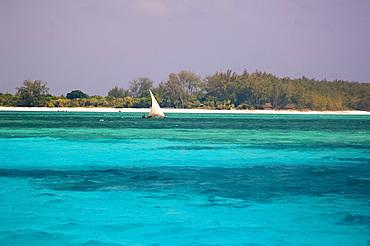 A dhow sailing in the blue seas close to Mnemba Island near Zanzibar, Tanzania, East Africa, Africa